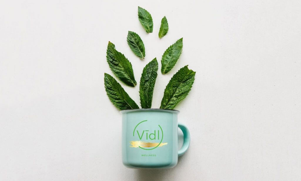 Vidl Wellness Connect To Nature