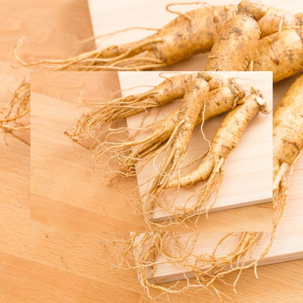 Ginseng- traditional Chinese medicine